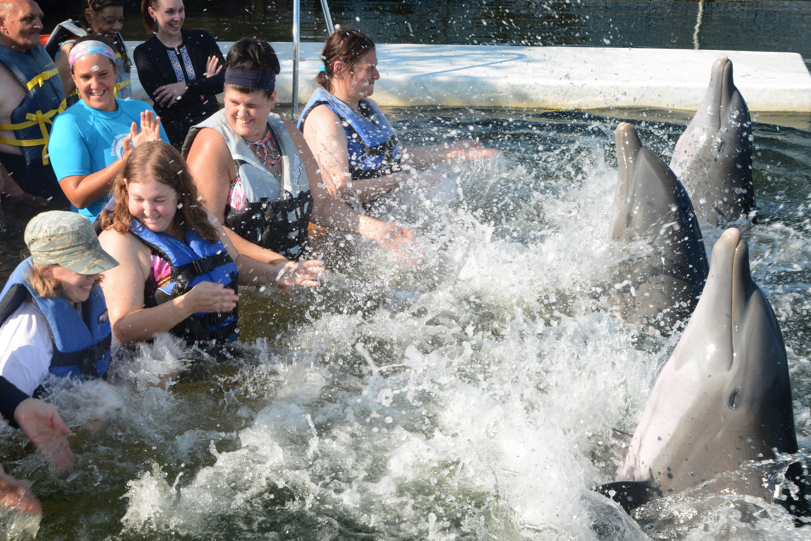 Vacationers and escorts enjoying being splashed by dolphins.